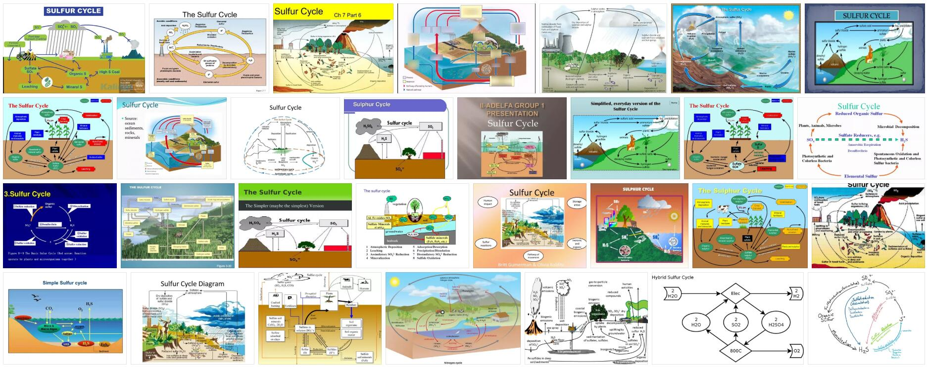 What is Sulfur Cycle