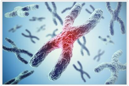 AN-acetylgalactosaminidase Deficiency Definition and Meaning